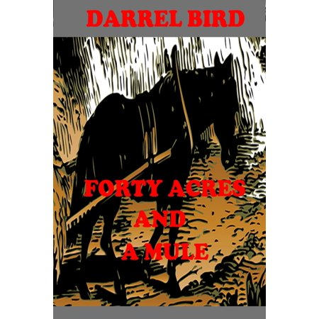 Forty Acres and a Mule - eBook