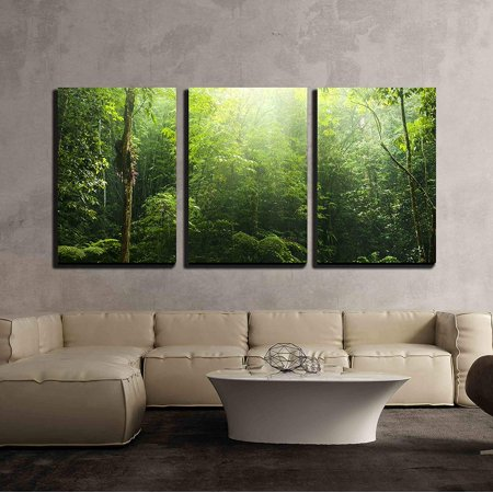 Wall26 3 Piece Canvas Wall Art Green Forest With Ray Of Light