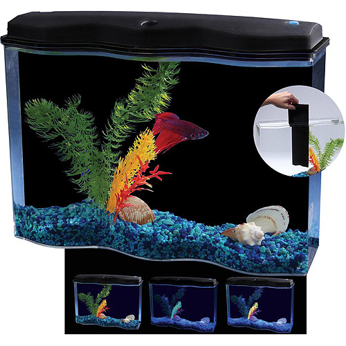 Aquarius BettaWave 2.5-Gallon Aquarium Kit with LED