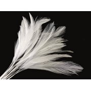 1 Dozen - White Stripped Rooster Neck Hackle Feather