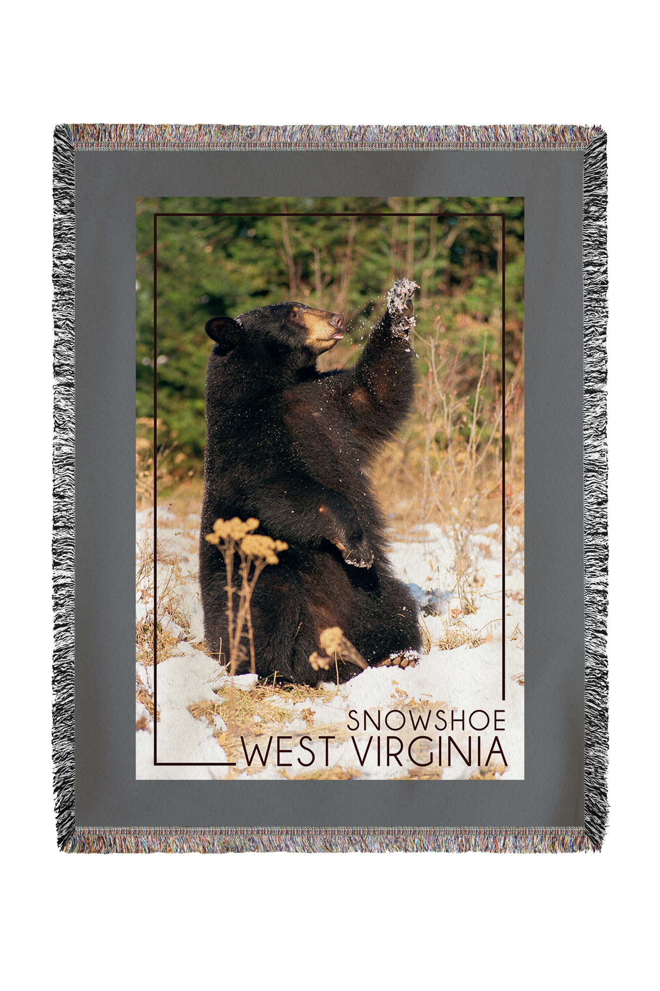 Snowshoe, West Virginia Bear Playing with Snow Lantern Press Photography (60x80 Woven Chenille Yarn Blanket) by Lantern Press