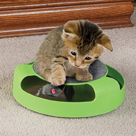 Pet Supplies Cat Plastic Catch the Mouse Interactive Turntable Pet Toys](Walmart Cat Supplies)