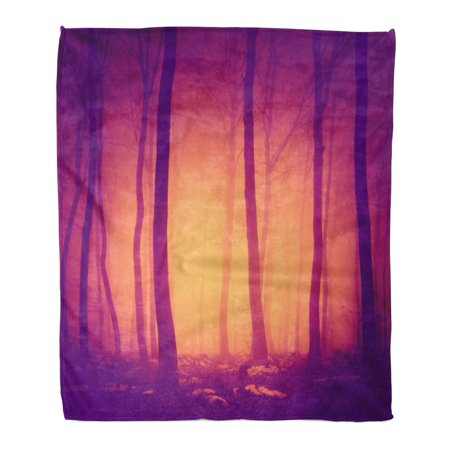 ASHLEIGH Flannel Throw Blanket Pink Halloween Spooky Purple Red Vintage Color Forest Scene Soft for Bed Sofa and Couch 58x80 Inches - Vintage Halloween Scenes
