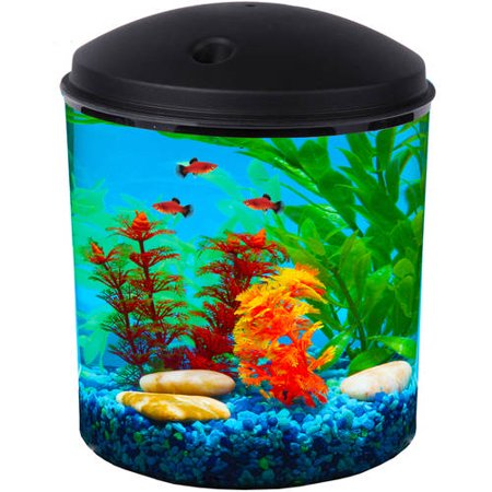 Hawkeye 2 gallon 360 starter aquarium kit with led for Walmart fish supplies