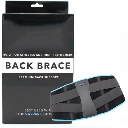 Back Brace Support for Lower Back Pain, Sciatica, Scoliosis, Herniated Disc by The Coldest