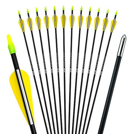 ANTSIR 28 Fiberglass Archery Target Arrows-Practice Arrows for Kids Youth or Beginners on Recurve Bow Traditional Bow Long Bow(Yellow Vanes Pack of 12) thumbnail