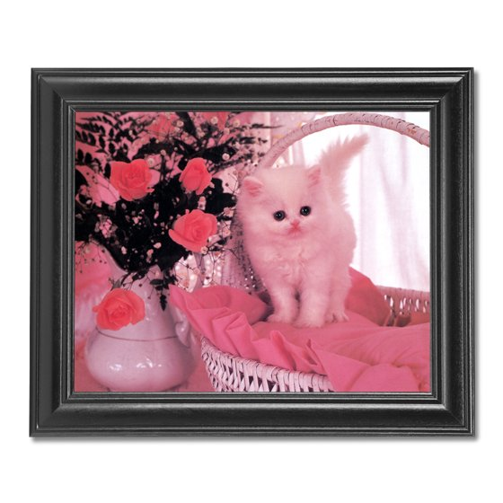 White Persian Kitten Cat Rose Flower Bouquet Photo Wall Picture ...
