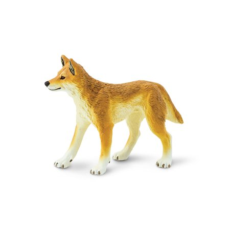 Wild Safari Wildlife Dingo Safari Ltd Animal Educational Kids Toy Figure (Kids Safari)