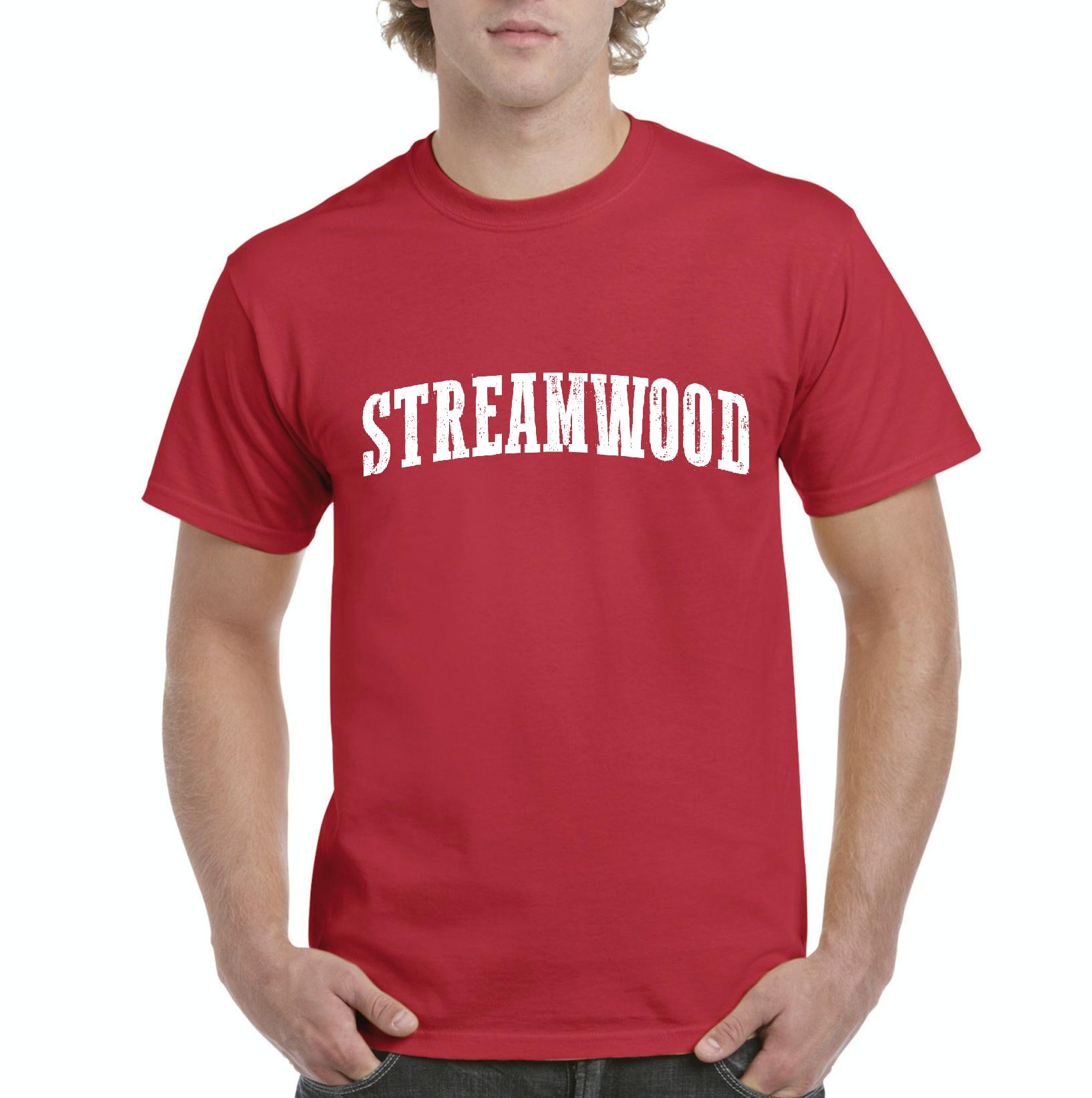 streamwood men Evaluate deangelo flynn's men's basketball recruiting profile learn how this streamwood high school student is connecting with coaches in il and nationwide.