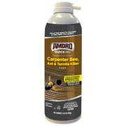 Amdro Quick Kill Carpenter Bee, Carpenter Ant & Termite Killer Foam; 18 ounces