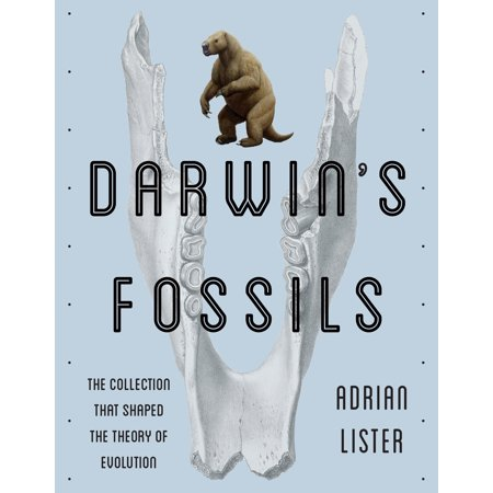 Darwin's Fossils : The Collection That Shaped the Theory of Evolution