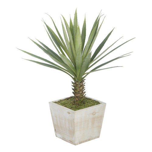 House of Silk Flowers Inc. Artificial Yucca Desk Top Plant in Planter
