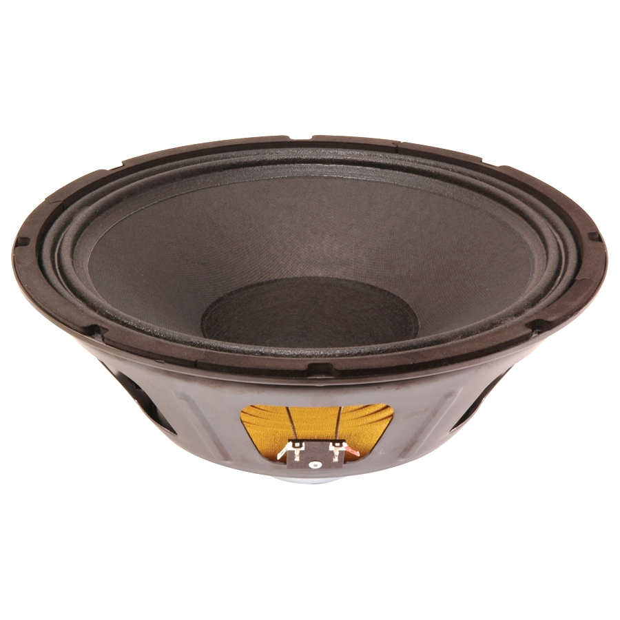 12-in Bass Guitar Speaker  300W Max  8 ohms w/Copper voice coil