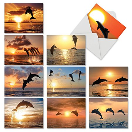 'M6460OCB SUNSET DOLPHINS' 10 Assorted All Occasions Note Cards Featuring Inspirational and Relaxing Images of Leaping Dolphins Silhouetted Against the Setting Sun with Envelopes by The Best Card Comp
