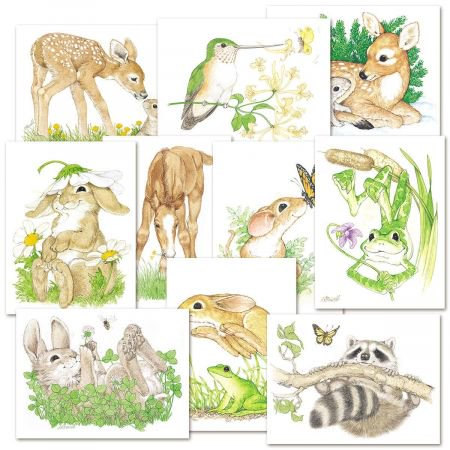 Cute Critters Note Cards- Value Pack of Blank Notecards, set of 20 (Value Stationary)