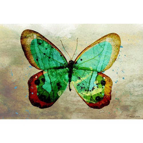 Maxwell Dickson Butterfly Graphic Art on Wrapped Canvas