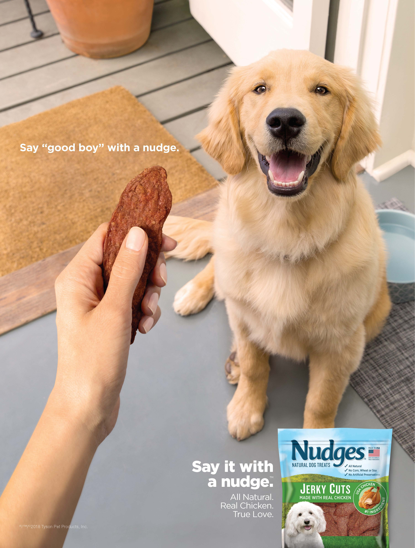 Excellent Nudges Health And Wellness Chicken Jerky Dog Treats 16 Oz Beutiful Home Inspiration Truamahrainfo