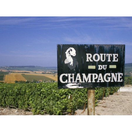 Route Du Champagne Sign, Near Epernay, Marne, Champagne Ardenne, France Print Wall Art By Michael
