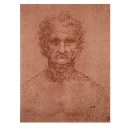 Head of an Old Man, Drawing, Royal Library, Windsor Print Wall Art By Leonardo da Vinci