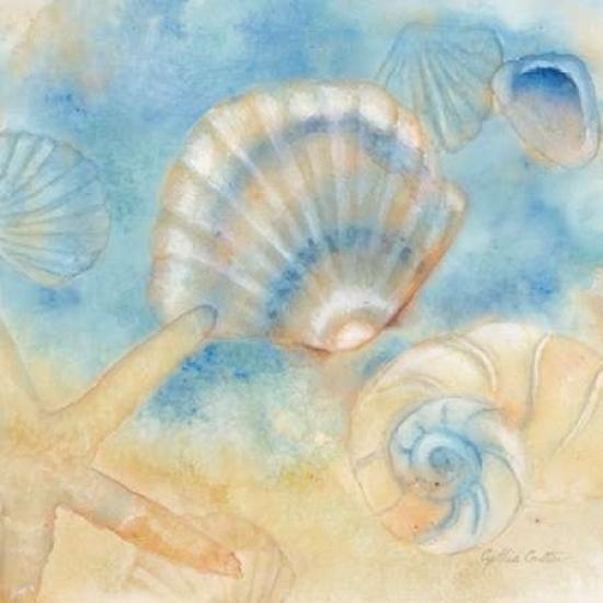 Watercolor Shells Ii Canvas Art Cynthia Coulter 24 X 24