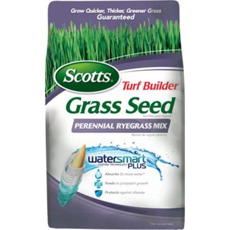 Perennial Ornamental Grasses (Scotts 18163 Turf Builder Perennial Rye Mix Grass Seed, 7 lbs )