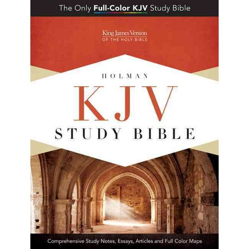 KJV Study Bible (Full Color)-Pink/Brown LeatherTouch Indexed