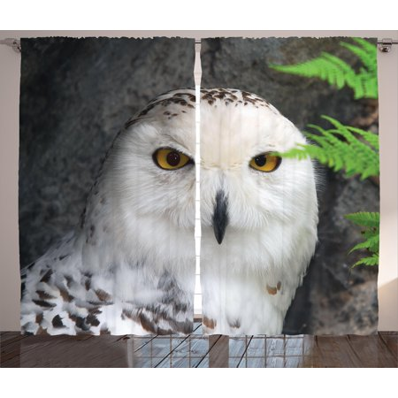 - Wizard Curtains 2 Panels Set, Pattern White Owl Themed Animal Green Leaves Amber Eyes Gift Witchcraft Print, Window Drapes for Living Room Bedroom, 108W X 90L Inches, White Green Black, by Ambesonne