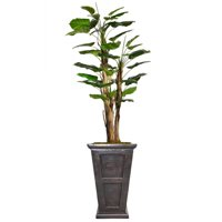 "66""H Scindapsus Aureus Artificial Indoor/ Outdoor Faux Dcor in Banana Skin, With Burlap Kit By Minx NY"
