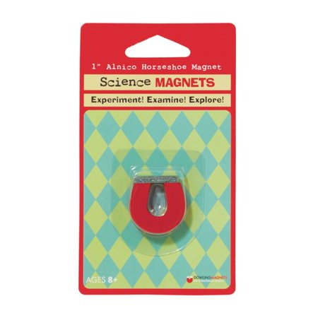 Dowling Magnets Science Magnet Alnico Horseshoe
