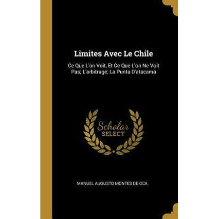 Limites Avec Le Chile: Ce Que l'On Voit, Et Ce Que l'On Ne Voit Pas; l'Arbitrage; La Punta d'Atacama (On Ne Voit Bien Qu Avec Le Coeur)
