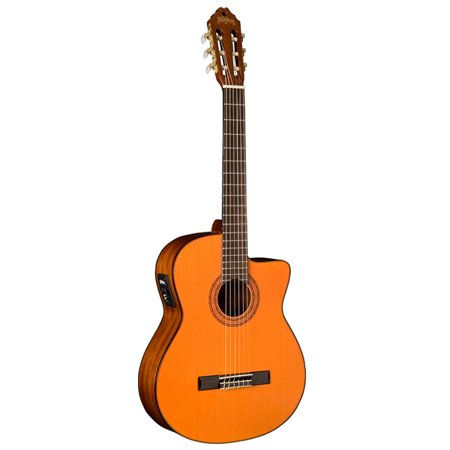 Classical Electric Guitar (Washburn Classical Acoustic Electric)