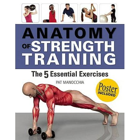 Anatomy Of Strength Training The 5 Essential Exercises Walmart