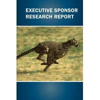 Executive Sponsor Research Report