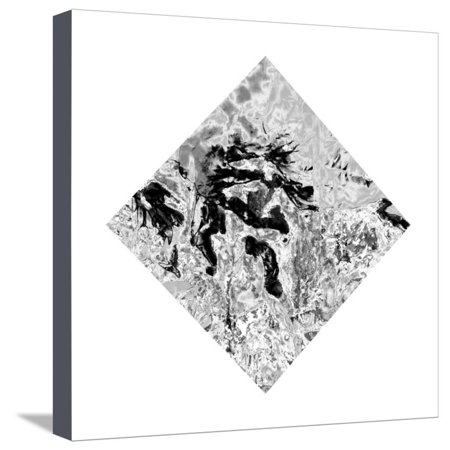 The Bird of Fire Was in Mt. Fuji in Japan Once Stretched Canvas Print Wall Art By Masaho