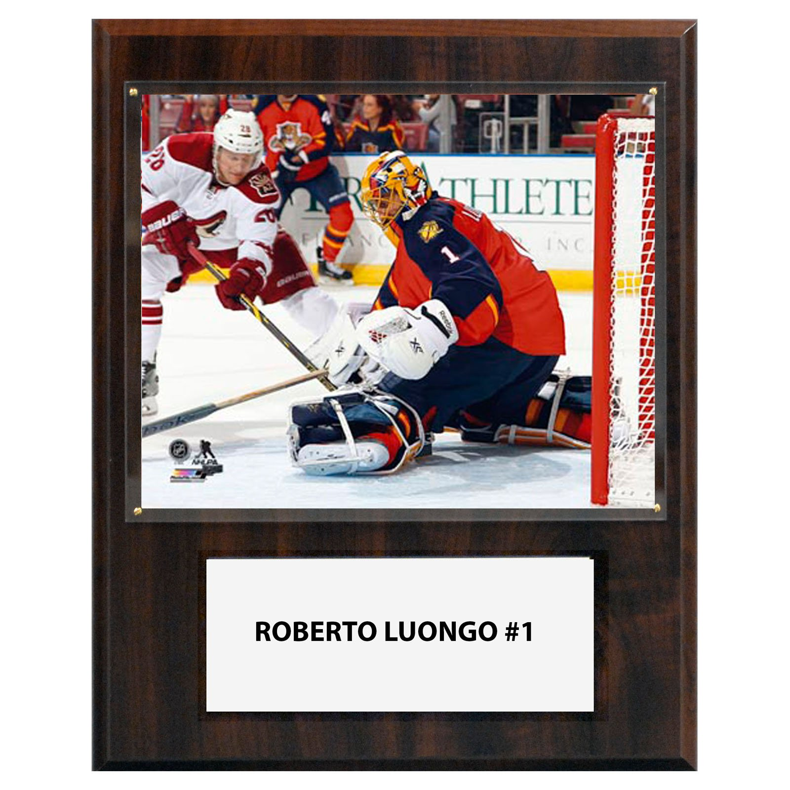"C&I Collectibles NHL  Roberto Luongo Florida Panthers Player Plaque 12""x15"""