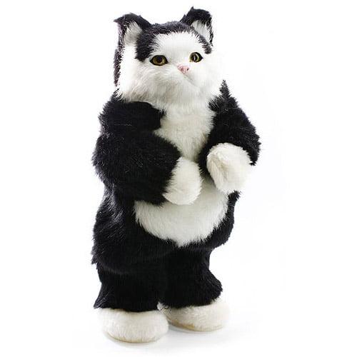 Cobra Digital Party Animal, Black and White Cat