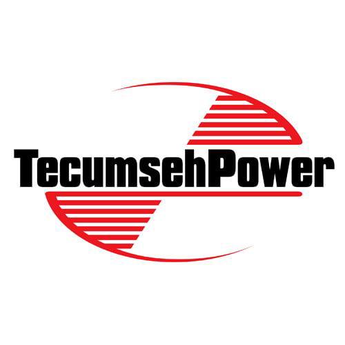 Genuine Tecumseh 640310 Carburetor