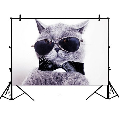 PHFZK 7x5ft Funny Cat Backdrops, Portrait of British Shorthair Gray Cat Wearing Sunglass Photography Backdrops Polyester Photo Background Studio (Sunglass Photo)