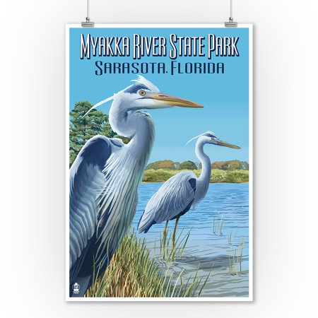 Myakka River State Park Sarasota, Florida - Blue Heron - Lantern Press Artwork (9x12 Art Print, Wall Decor Travel Poster) ()