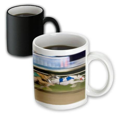 - 3dRose West Memphis, Arkansas. Greyhound races - US04 MDE0002 - Michael DeFreitas - Magic Transforming Mug, 11-ounce