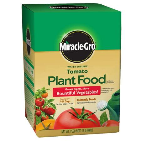 Scotts, Miracle Gro Tomato Plant Food, 1.5 lb - Miracle Gro Tomato Food