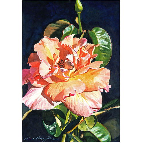 "Trademark Art ""Royal Rose"" Canvas Wall Art by David Lloyd Glover"