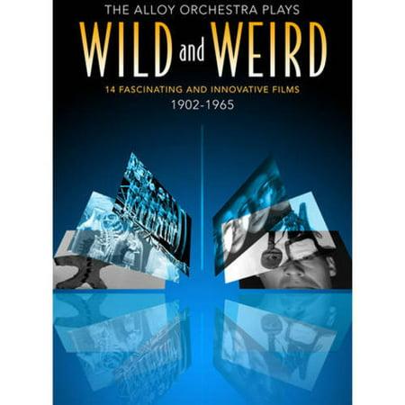 Wild & Weird Films