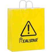 AAB 3G16619 16 in. x 19 in. Gloss Paper Shopping Bag - Pack of 250