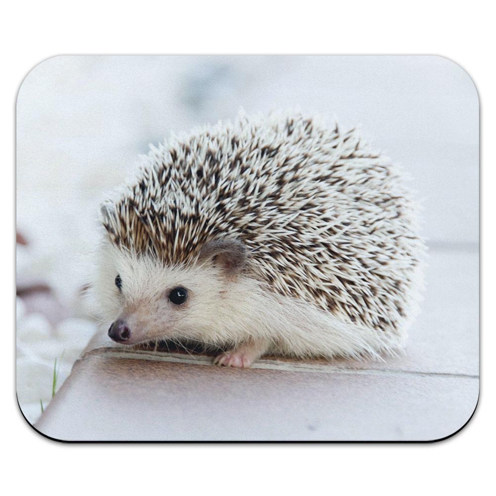 Hedgehog - Pet Mouse Pad