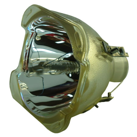 Lutema Economy for Dell 4310WX Projector Lamp (Bulb Only) - image 5 de 5