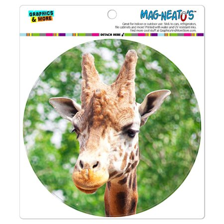 Giraffe African Zoo Animal - Circle MAG-NEATO