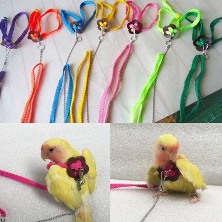 Parrot Bird Leash Outdoor Flying Practice Adjustable Harness Training Rope