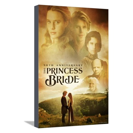 The Princess Bride 30th Anniversary Stretched Canvas Print Wall Art ...