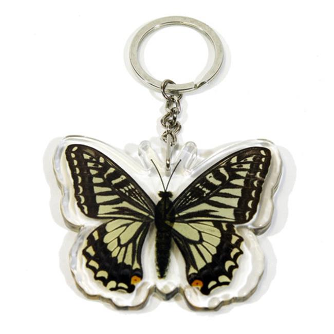 Ed Speldy East Company BTK102 Real Bug Asian Swallowtail Butterfly Key Chain